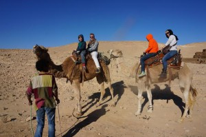 Bedouin camel ride