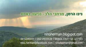 Nino Herman